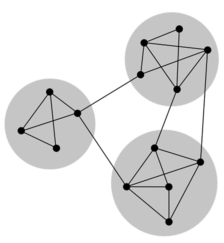 Social Dynamics